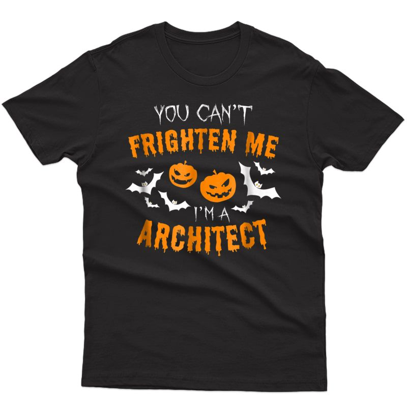 You Can't Frighten Me I'm An Architect T-shirt
